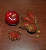 Salacca + Rambutan