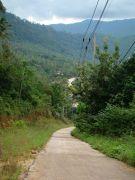 Дорога со смотровой